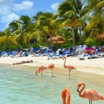 Destinace: Aruba